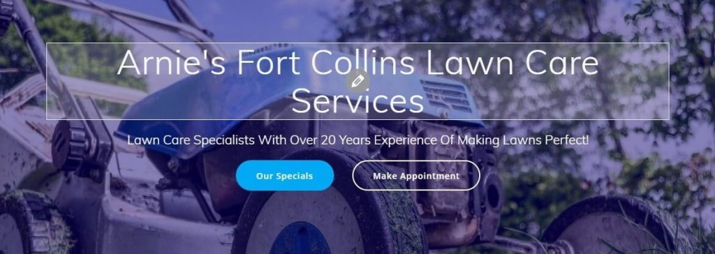 lawnmower website hompages changes shown in wordpress