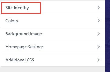 site identity options in the customize of wordpress