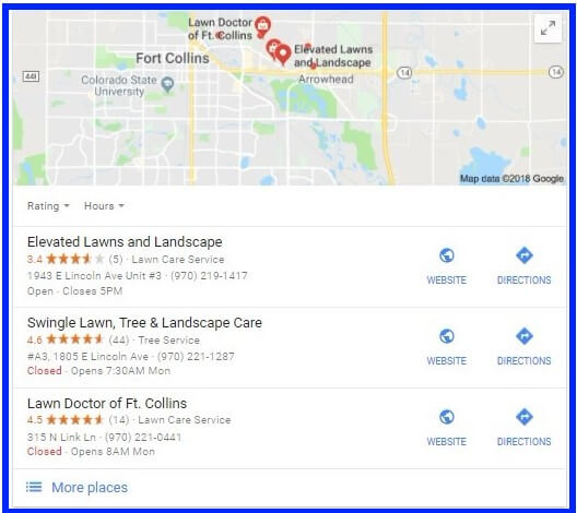 Local Search Results Example