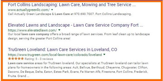 Organic Search Results Example