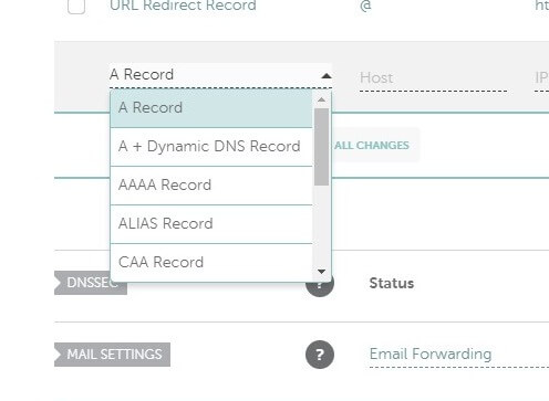 The A Record at namecheap